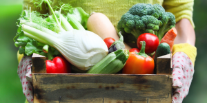 Правильное питание при гастроэнтерите
